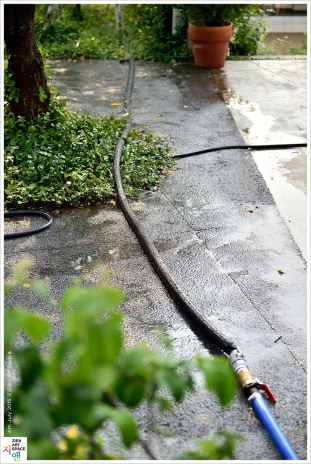 자작나무 전용 관수시스템 설치 썸네일 사진